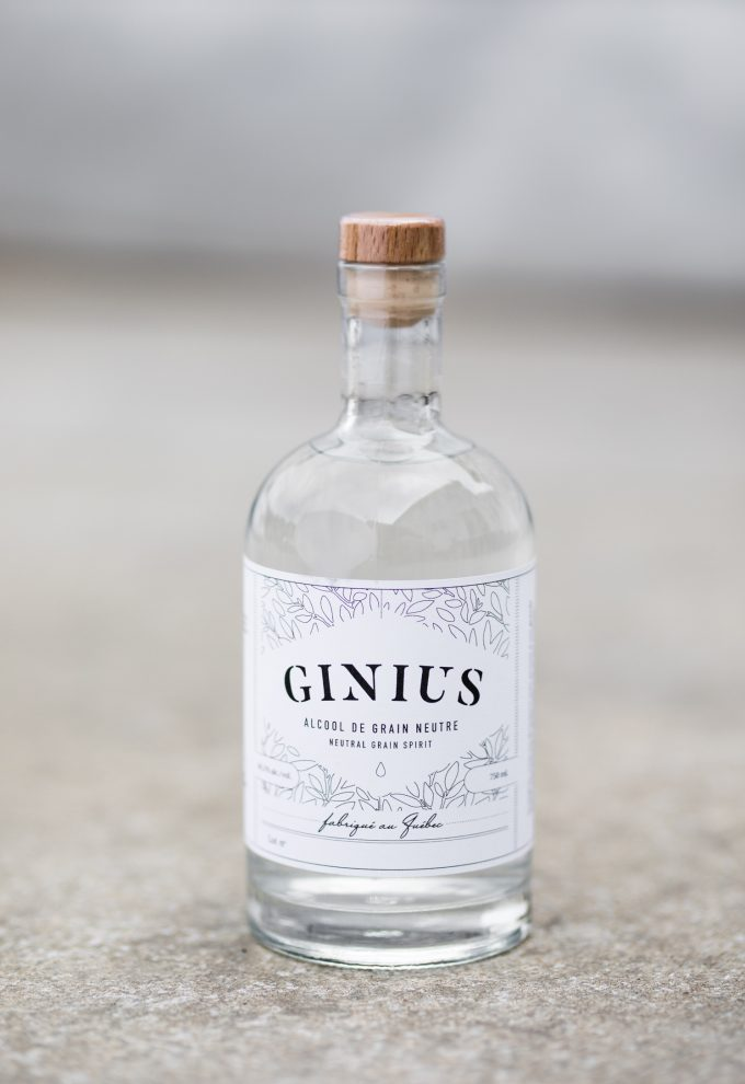 Ginius Kit